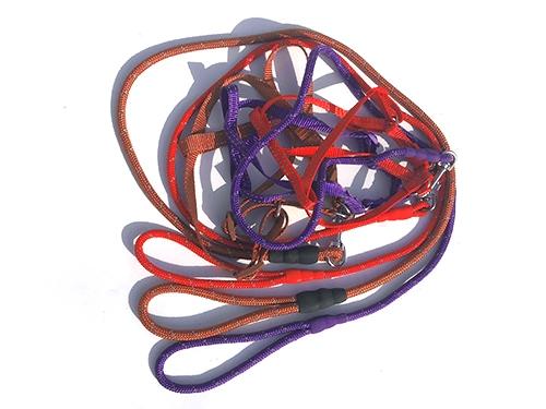 反光丝圆绳胸背牵引带